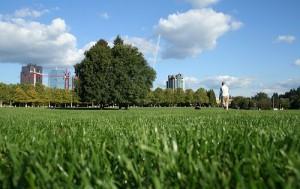 bellevue-downtown-park