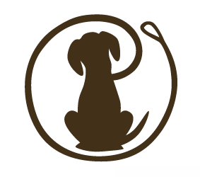 Downtown Bellevue Features Dog Walking Business 4paws And A Wag Downtown Bellevue Network